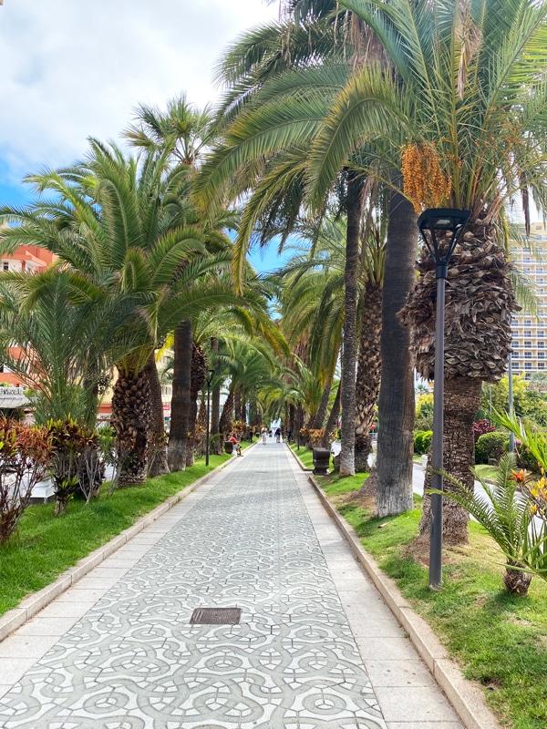 puerto_de_la_cruz