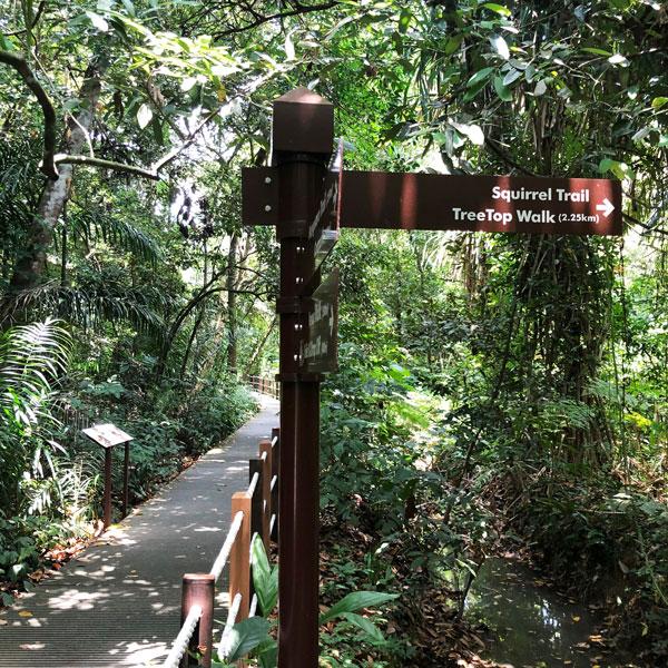 tree top walk singapur