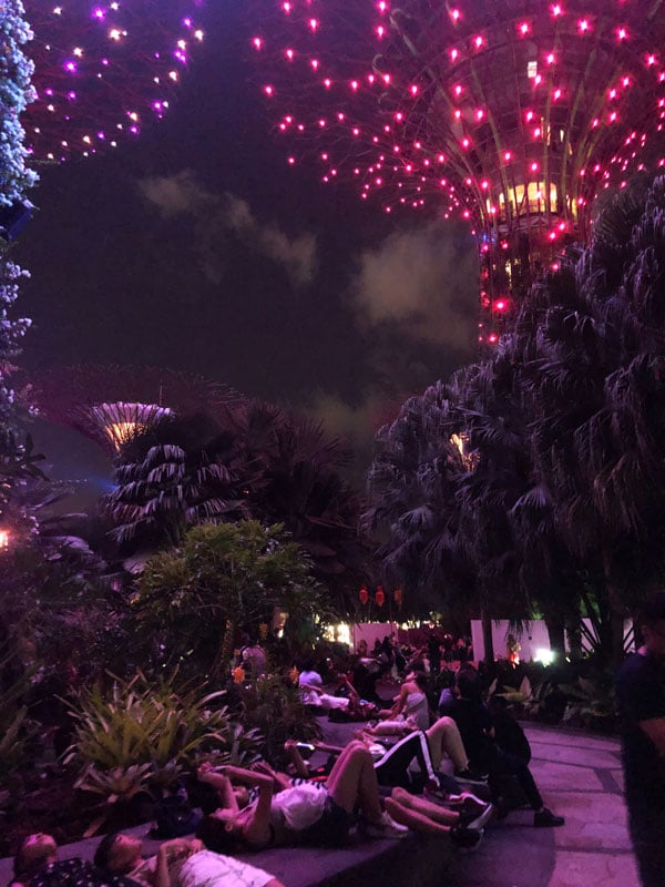 gardens_by_the_bay_lightshow