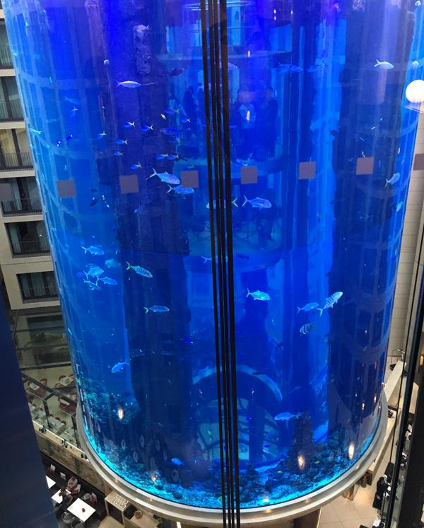 Radisson_blu_berlin_aquarium